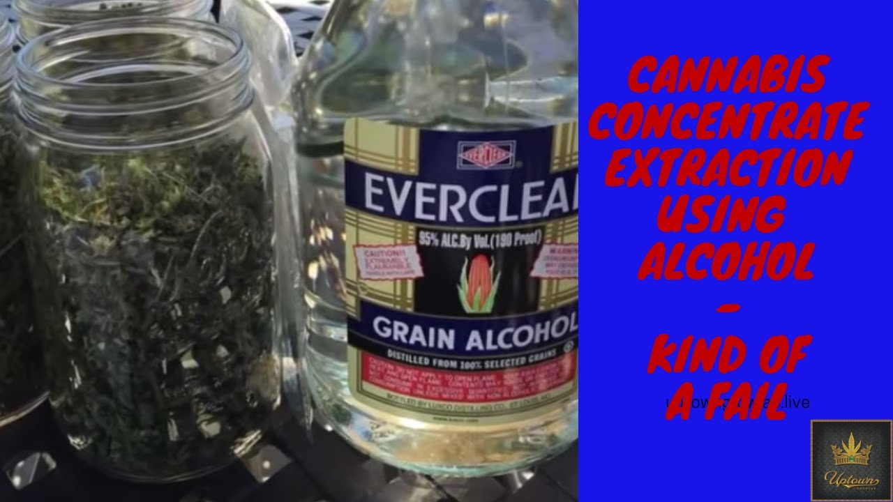 Cannabis Extraction 101: How to Make Cannabis Oil with Alcohol at Home