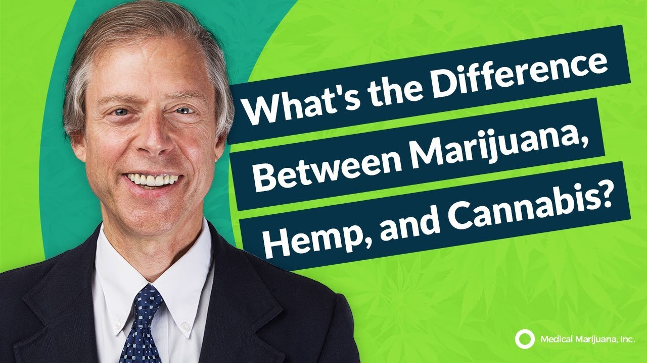 What's the Difference Between Marijuana, Hemp, and Cannabis?