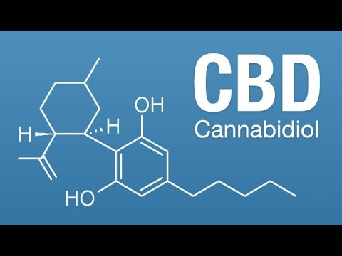 The BENEFITS of CBD OIL – Easily laid out